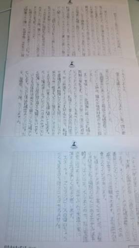 My original hand written essay on 'genkoyoushi' paper